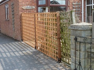 New posts and trellis erected